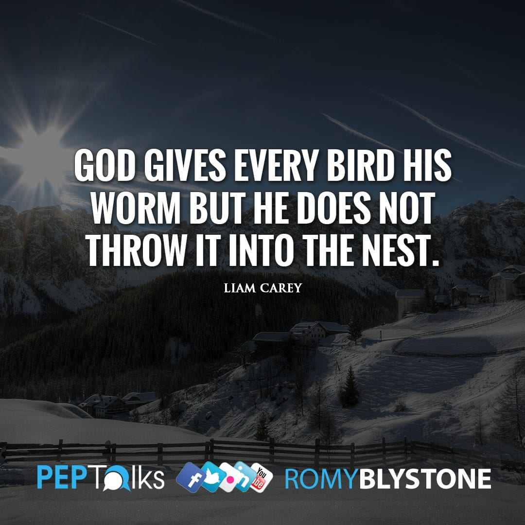 God gives every bird his worm but He does not throw it into the nest. by Liam Carey