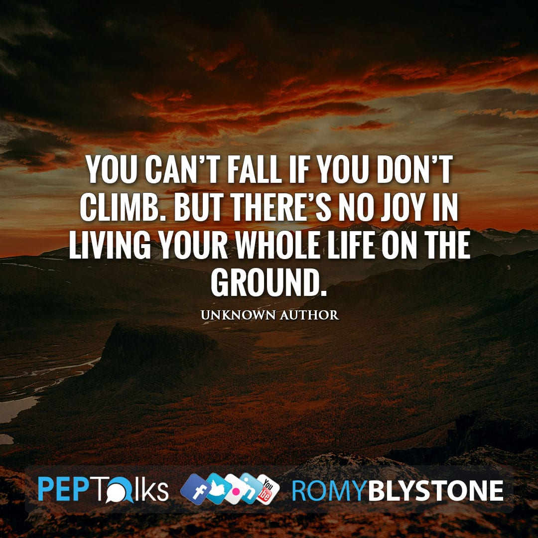 You can't fall if you don't climb. But there's no joy in living your whole life on the ground. by Unknown Author